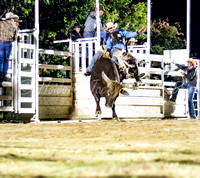 16_04_24_192436_Rodeo Maidenwell_0013