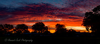 Kingaroy Sunset