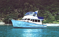 Emmanuel at Ponui Island - the old canvas